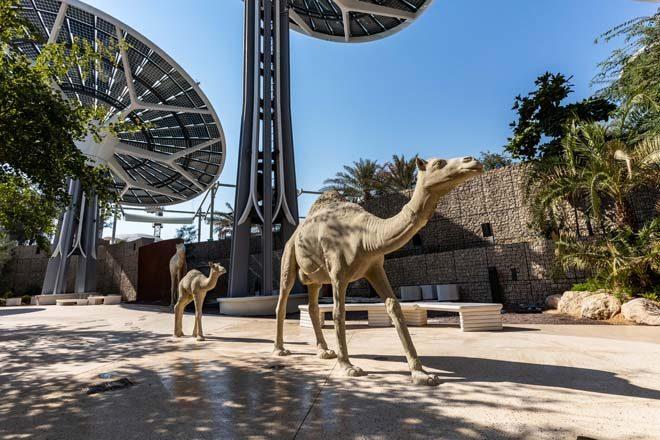 210115_Expo_Sustainability Pavilion_Arabian Wadi (3)