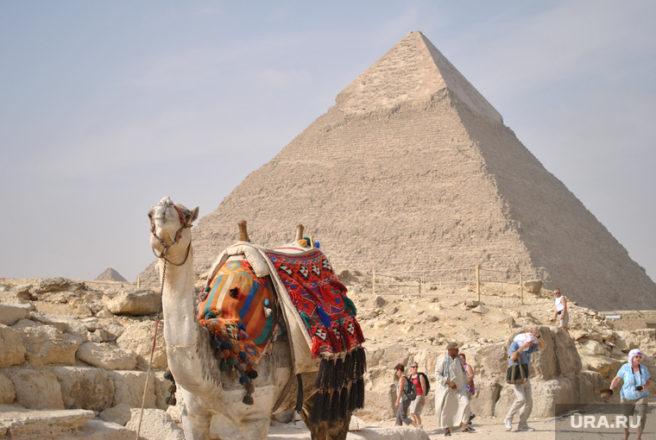 160538_Klipart_verblyud_piramida_egipet_Kair_250x0_2896.1945.0.0