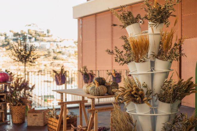 The Mall Sanremo — Harvest (3)